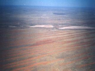 kalahari landscape - dunes and pans as far as the eye can see