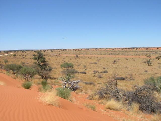 the 2km strip as viewed from the adjacent dune